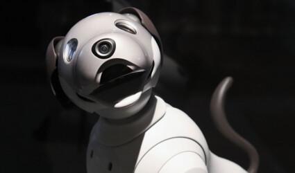 white robot dog smiling